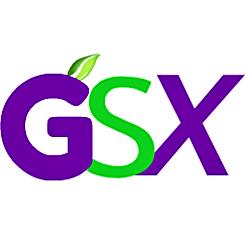 Goodstartx gsxinvertlogo 267