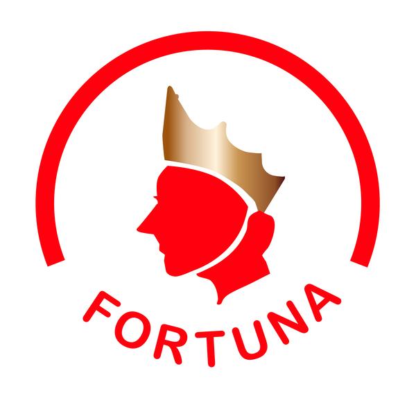 Fortuna 20logo
