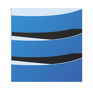 Logo trans 300