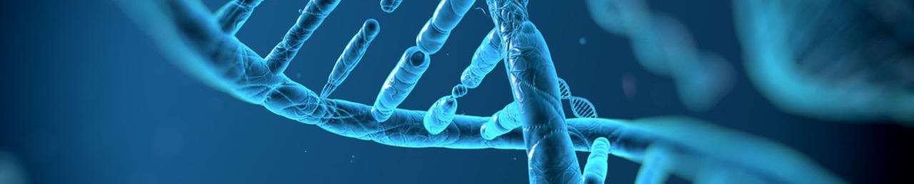 Biotech 20image