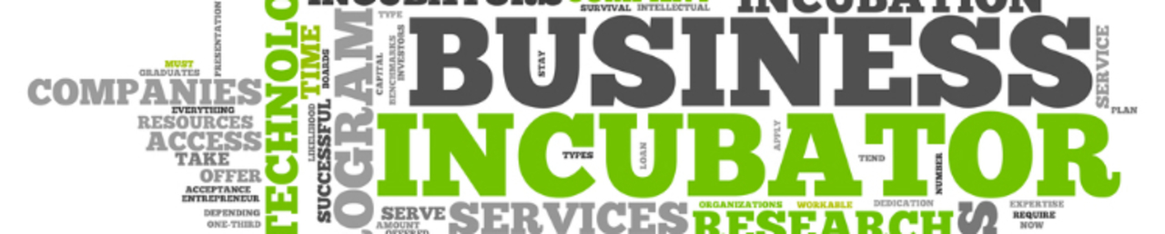 Business incubator media