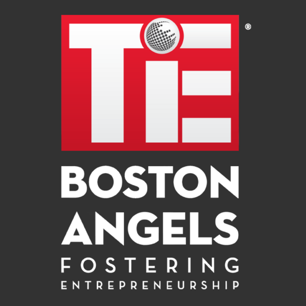 Tie boston angels logo noedl 2