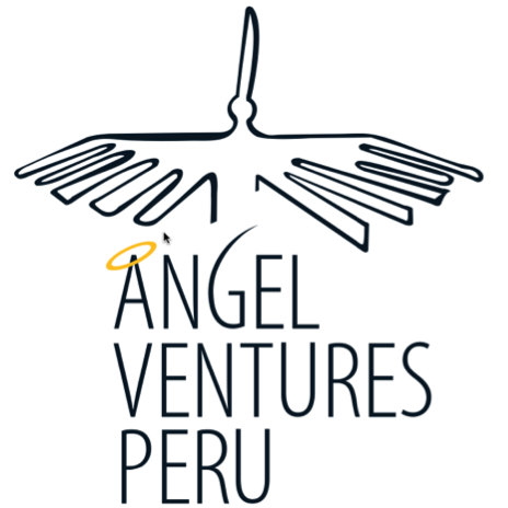 Logo 20  20angel 20ventures 20peru