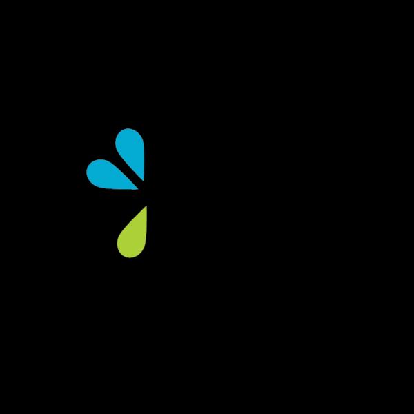 Bluelime logo v2 04 29 19