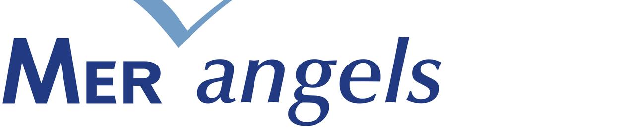 Logo 20mer 20angels couleurs