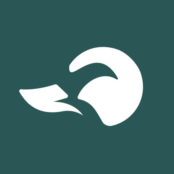 Ducksuite social logo