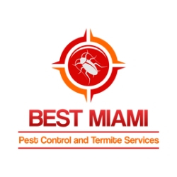 Best 20miami 20logo