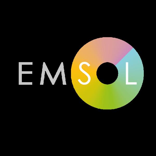 Emsol 20logo colour