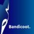 Micro bandicoot 20logo 20square 20with 20name