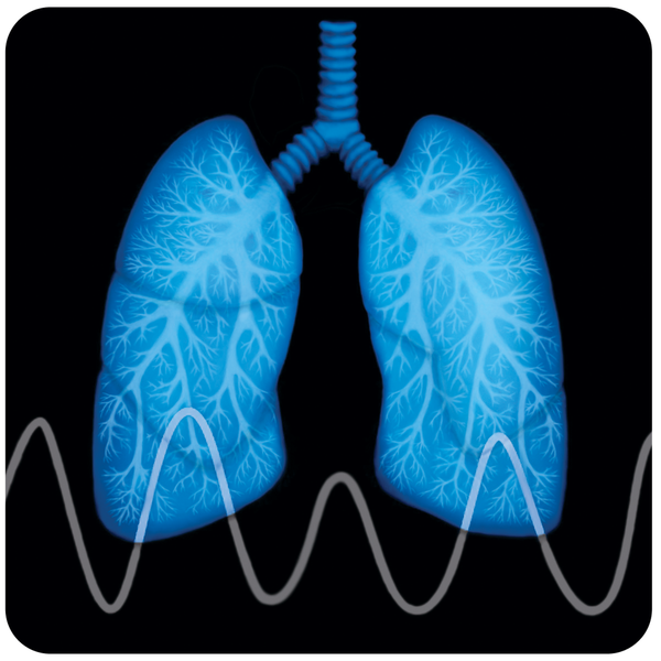 Lung 20icon