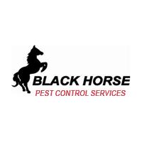 Black 20horse 20pest 20control 20logo