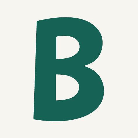 Binbreeze b icon