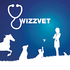 Micro avatar wizzvet03