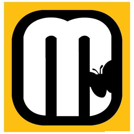 Logo mcflyy 2014 target