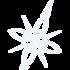Micro maris watermark