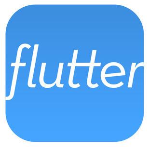 Flutter app icon whtbg