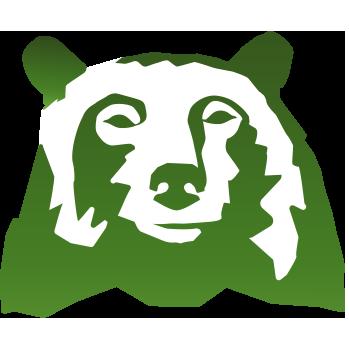 Bear 20head