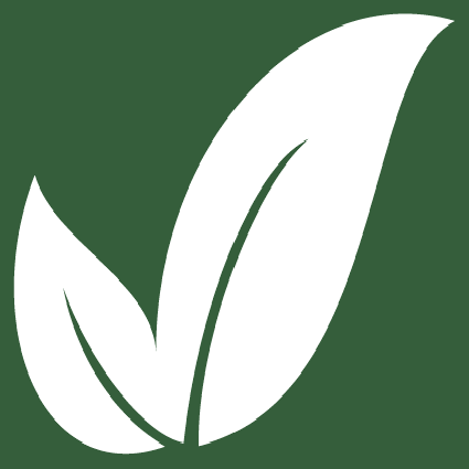 500foods logo leaf
