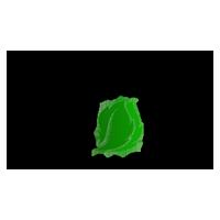 Sgt logo 200