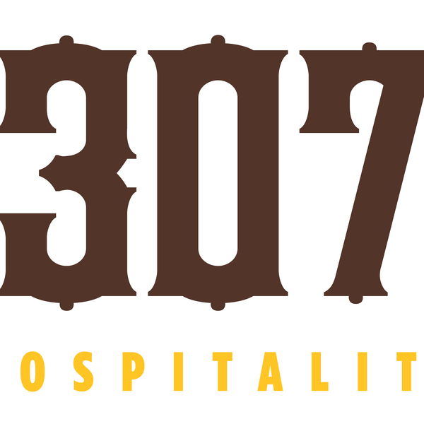 307 logo