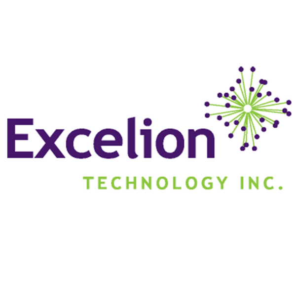 Excelion 20logo 20  20gust