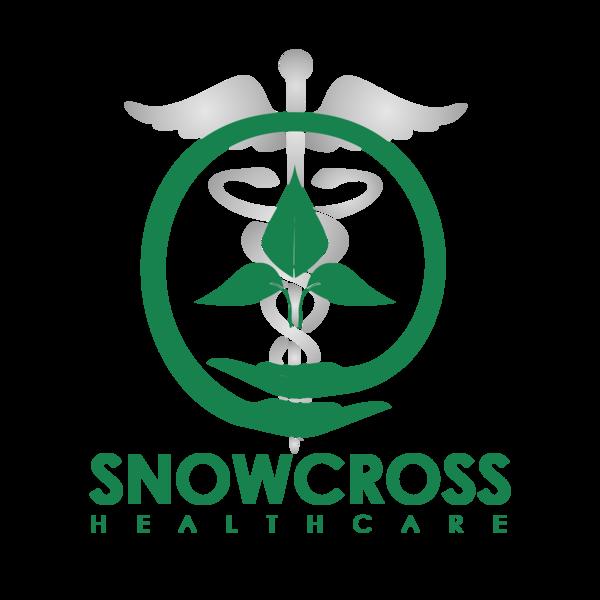 Snowcross 2