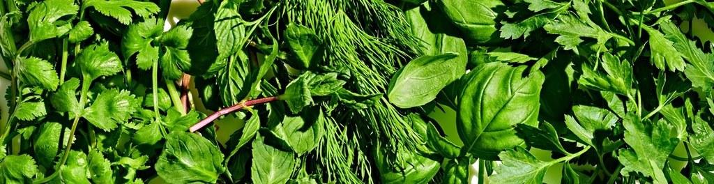 Basically herbs handful 02