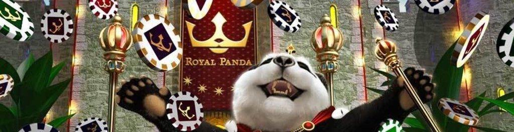 Royal panda casini