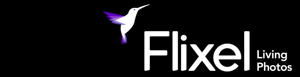 Flixel 20logo. 20website