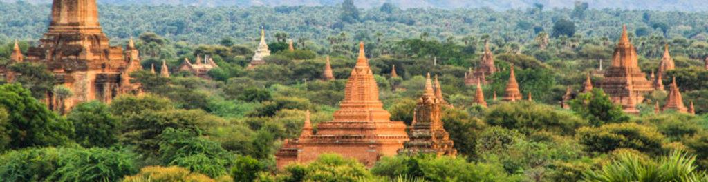 Bagan web