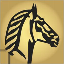 Suissebank pferd google 2b250x250px